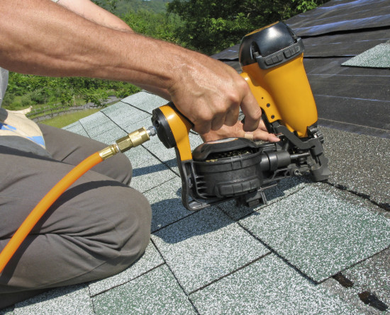 How To Prevent Roof Damages Caused By Pests And Moss