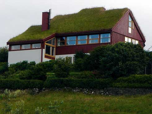 Implementing Green Roofing For Our House