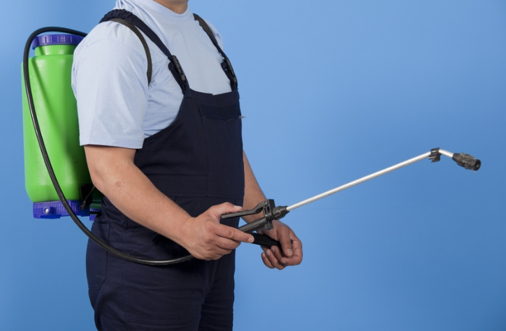 Choose The Best Pest Control Service For Secure Environment