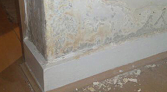 Here Is How You Can Get Rid Of Dampness In The Home Easily